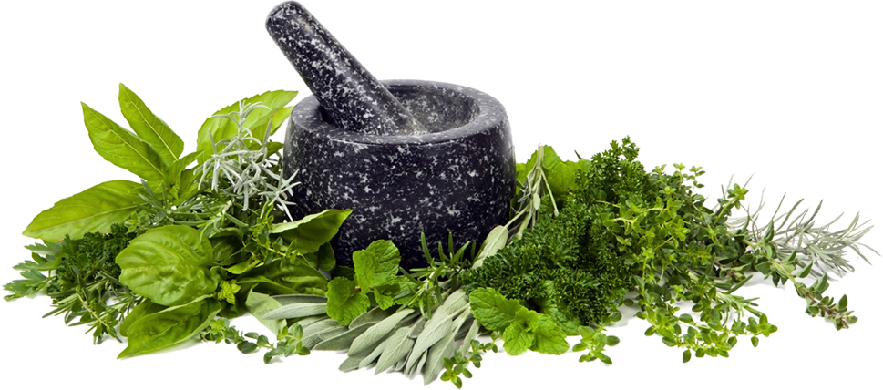 naczynie i zioła